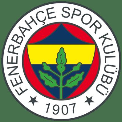 Fenerbahçe HDIS